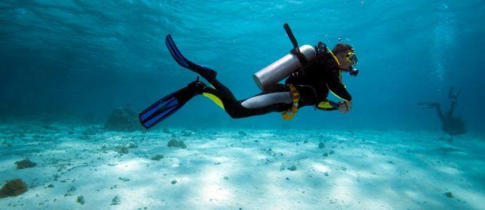 Best Snorkel Gear Bags
