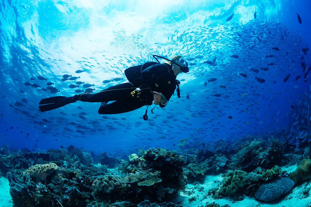 The Best Diving Spots In Australia And How To Prepare