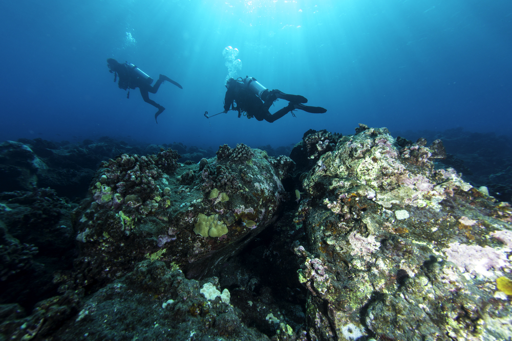 The Best Diving Spots in Hawaii and How to Prepare